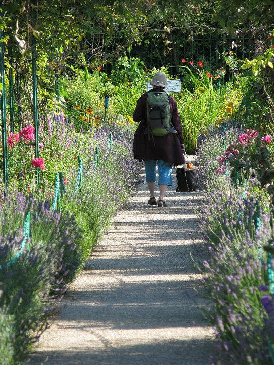A student strolling through Monet's Garden