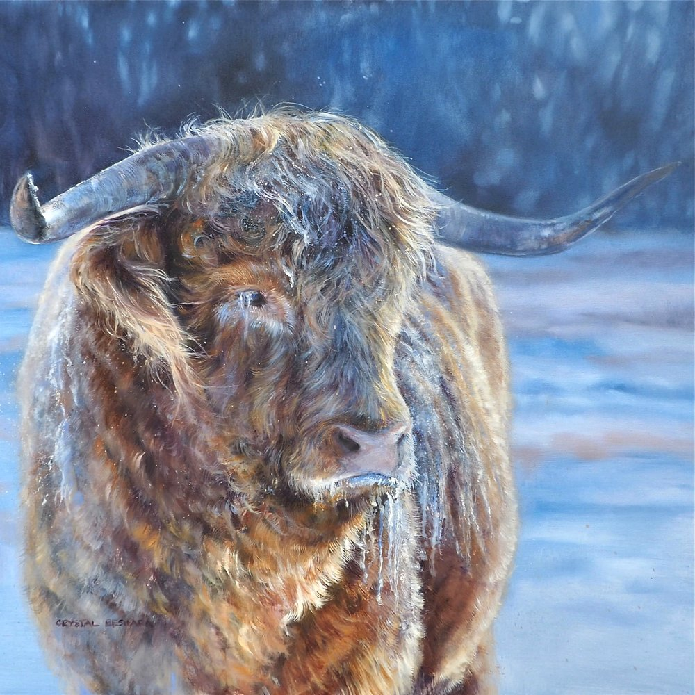 """Raymond"" oil on canvas 30x30 SOLD"