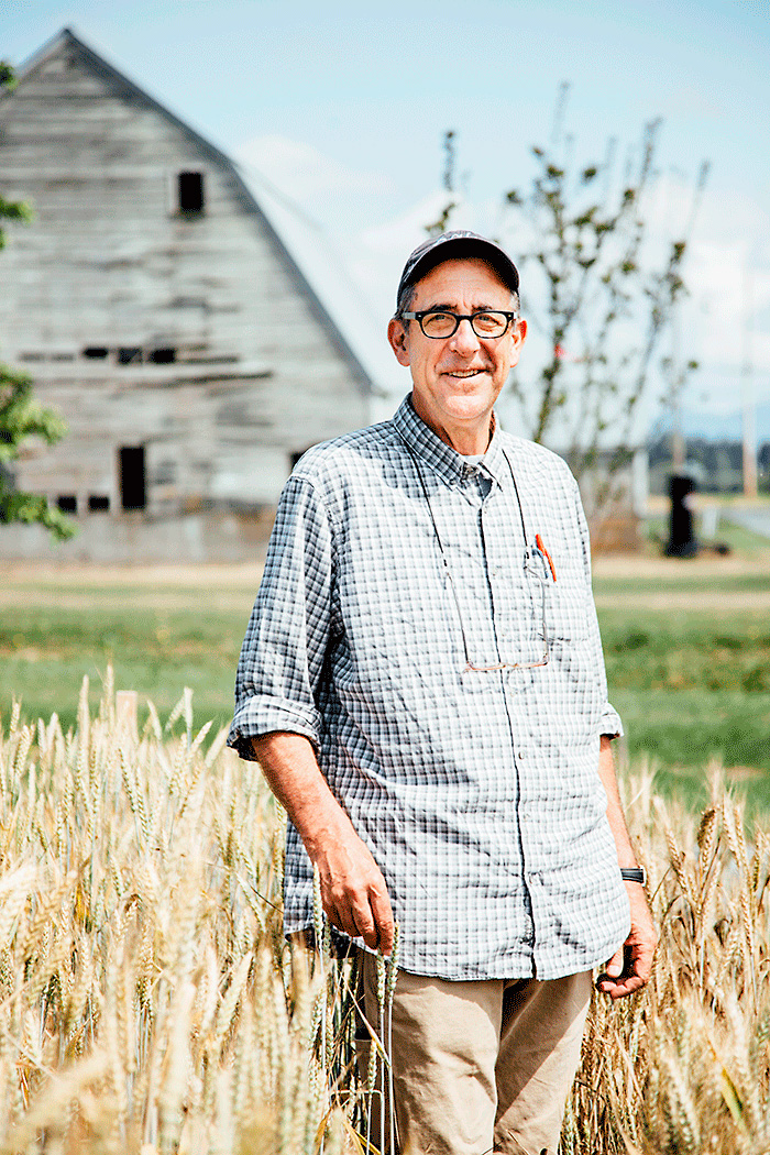 Dr. Stephen Jones, Bread Lab director and wheat breeder.