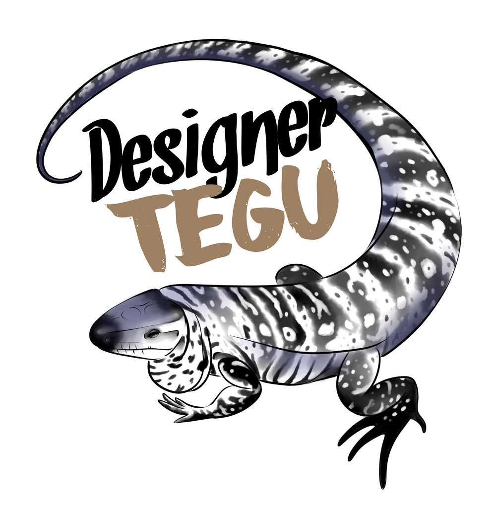 designertegu_whitebackground.jpg
