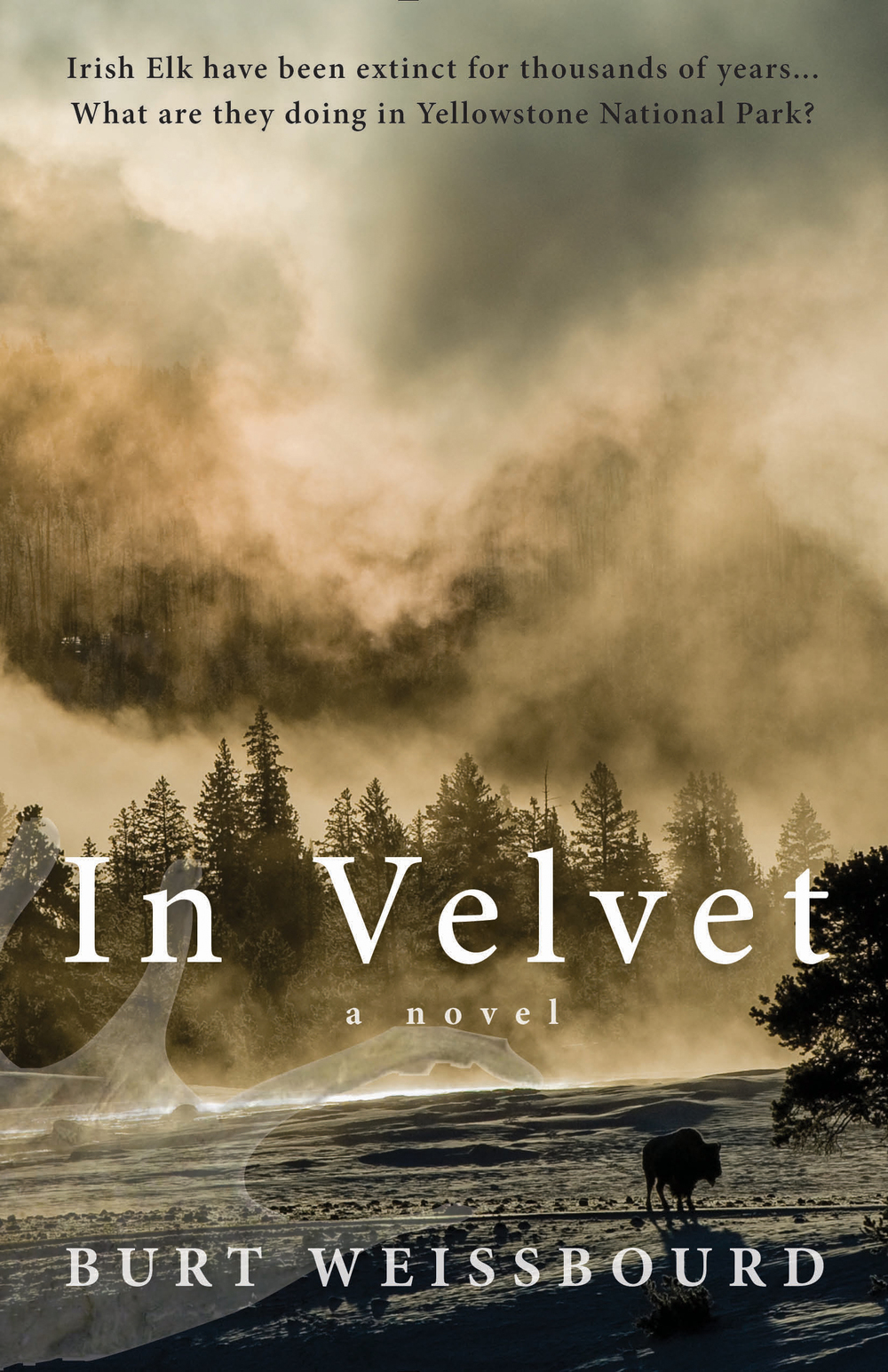 In Velvet by Burt Weissbourd The northwest corner of Yellowstone Park is closed for bear management, and Rachel, a bear biologist, is discovering some very startling animal behavior—grizzlies denning in June, swans at their wintering grounds in summer, what appear to be Irish Elk, an extinct species, with huge palmated antlers. There are also horrific mutations in the young—elk calves with no front legs, earless bear cubs, and eaglets without wings. What has gone wrong? Why is this area closed? Who's covering up these animal abnormalities in the Park?