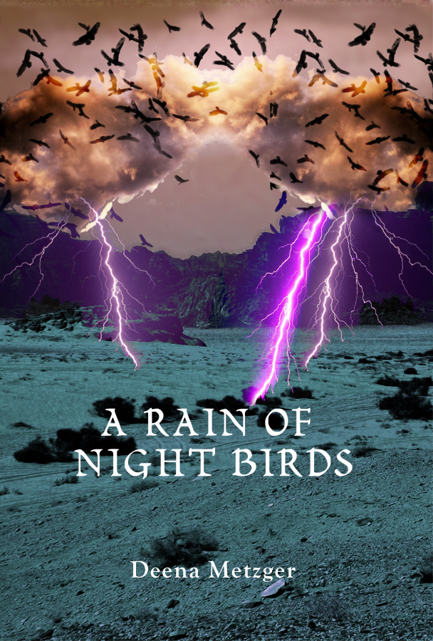 A Rain of Night Birds cover.jpg