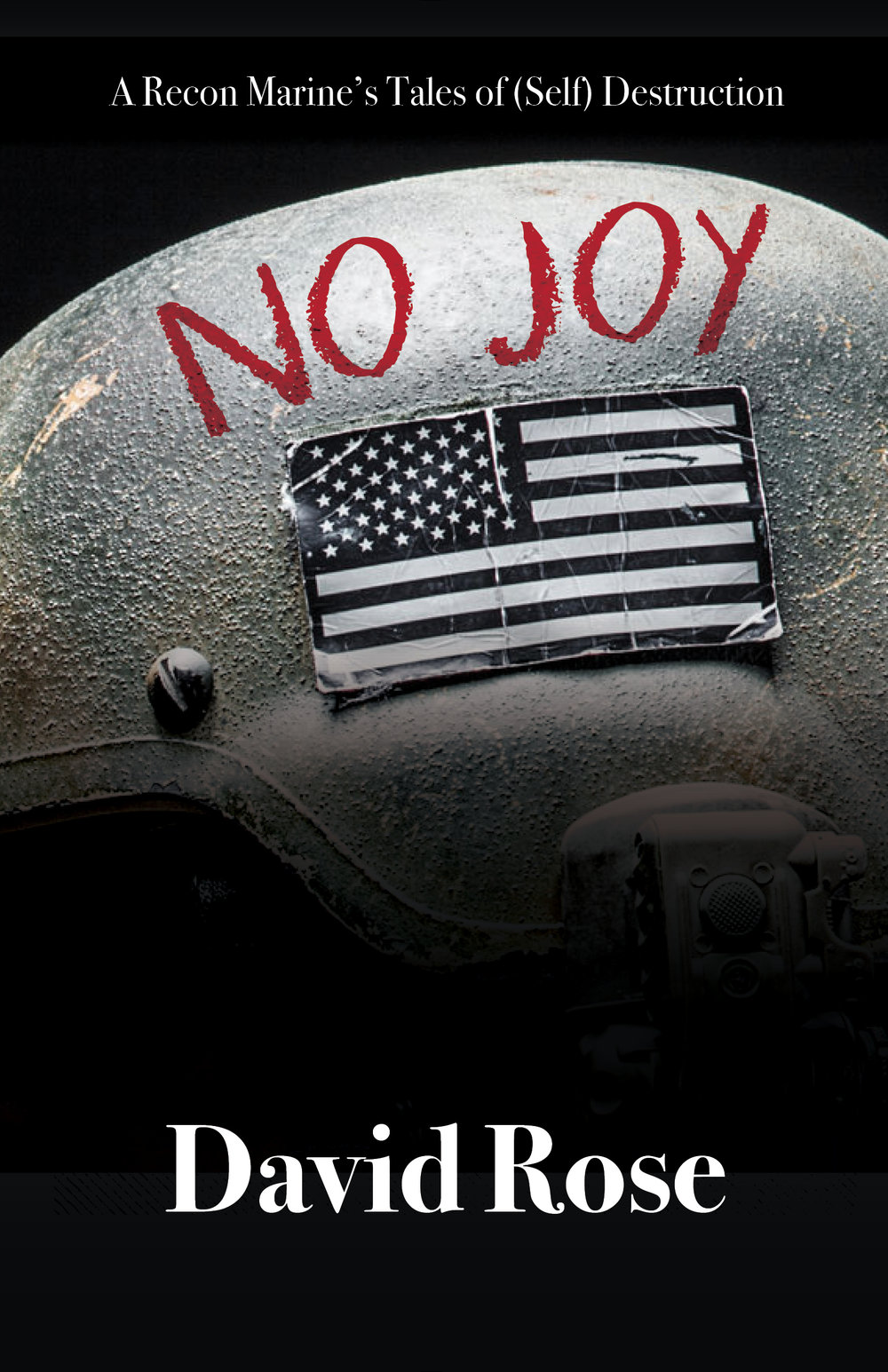 No Joy Final PR Cover RGB.jpg