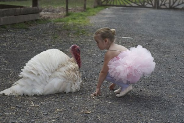turkey-CK-vegan-ballet-slippers.jpg