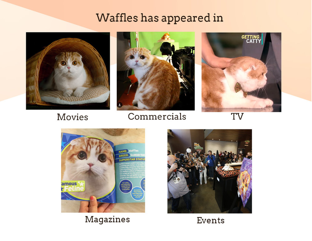 Waffles has appeared in movies, commercials, tv, magazines and events
