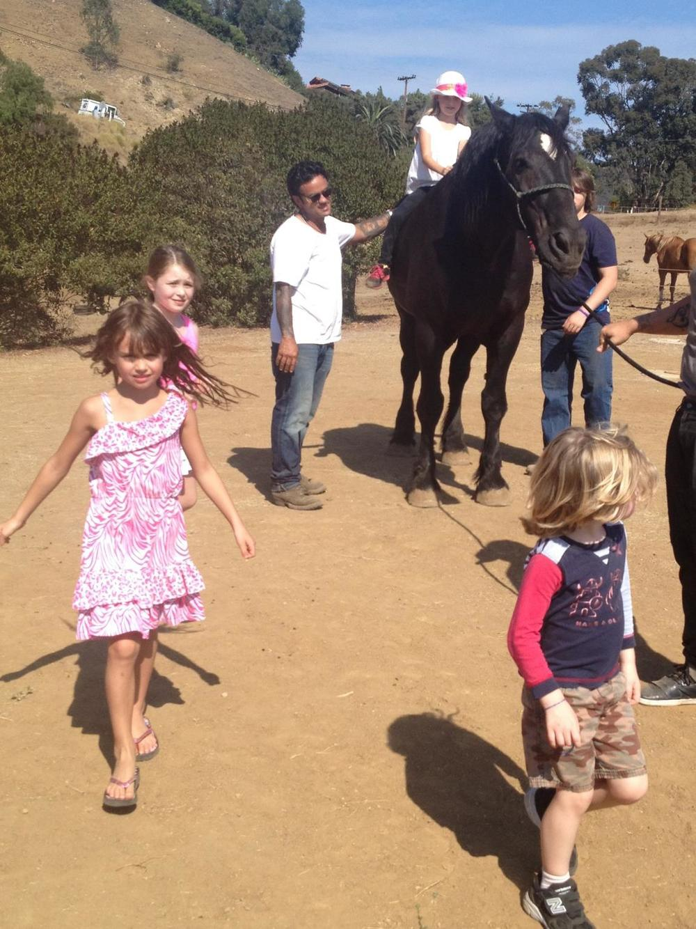 Goliath is the grandson of a very famous racehorse who was pushed extremely hard as a pony. Deceivingly scary, he was quite literally a gentle giant. The children adored riding him bareback and just walking with him.