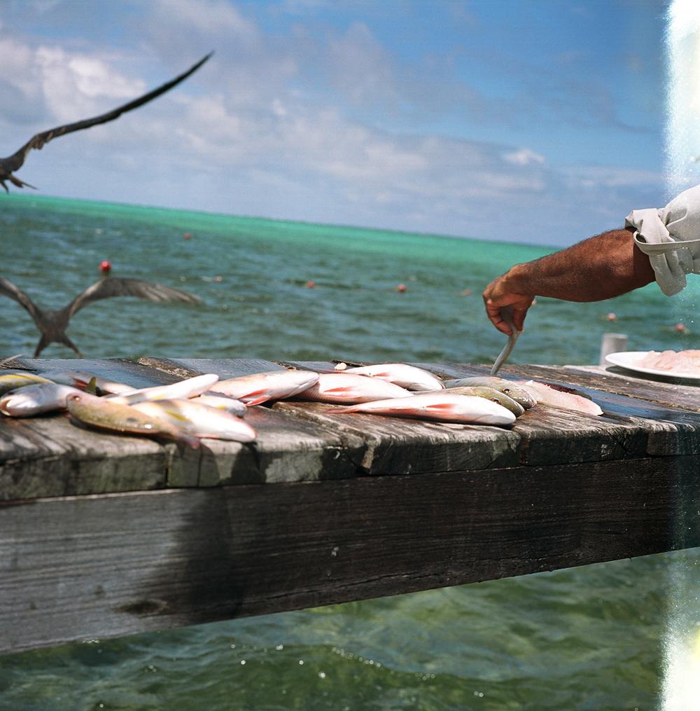 Belize514-11.jpg