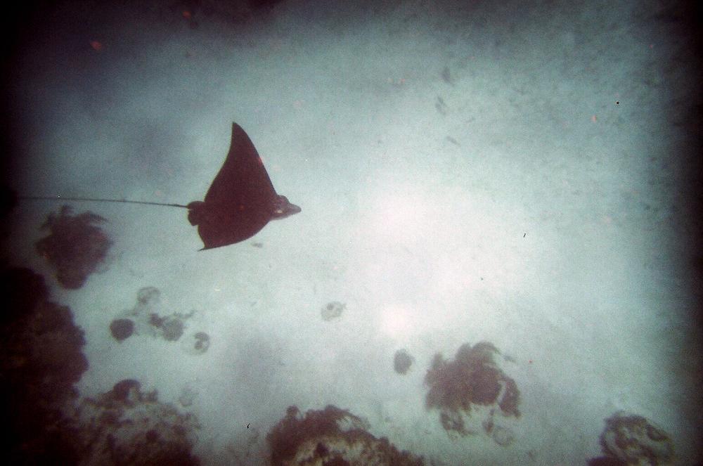 Belize514-34.jpg