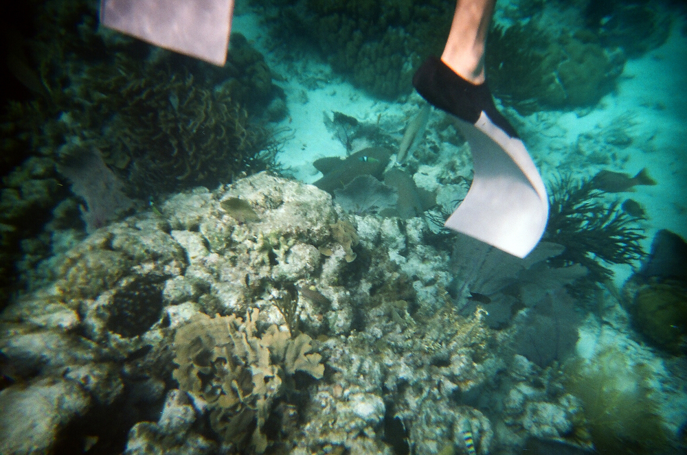 Belize514-35.jpg