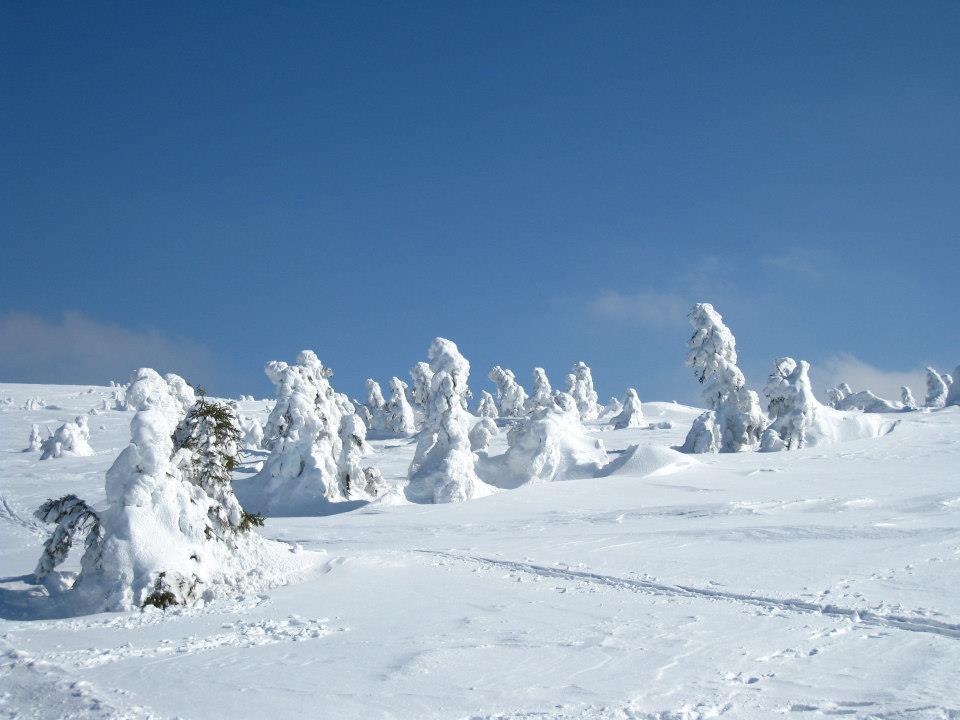 Na vrcholu hory  je umístěn hraniční kámen řádu německých rytířů a vratislavských biskupů  z roku 1721. V zimě jsou svahy Pradědu a  Petrových kamenů využívány jako atraktivní lyžařský areál.