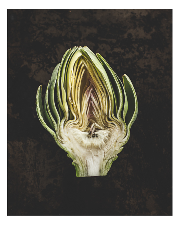 Artichoke Portrait Number 12 - SOLD