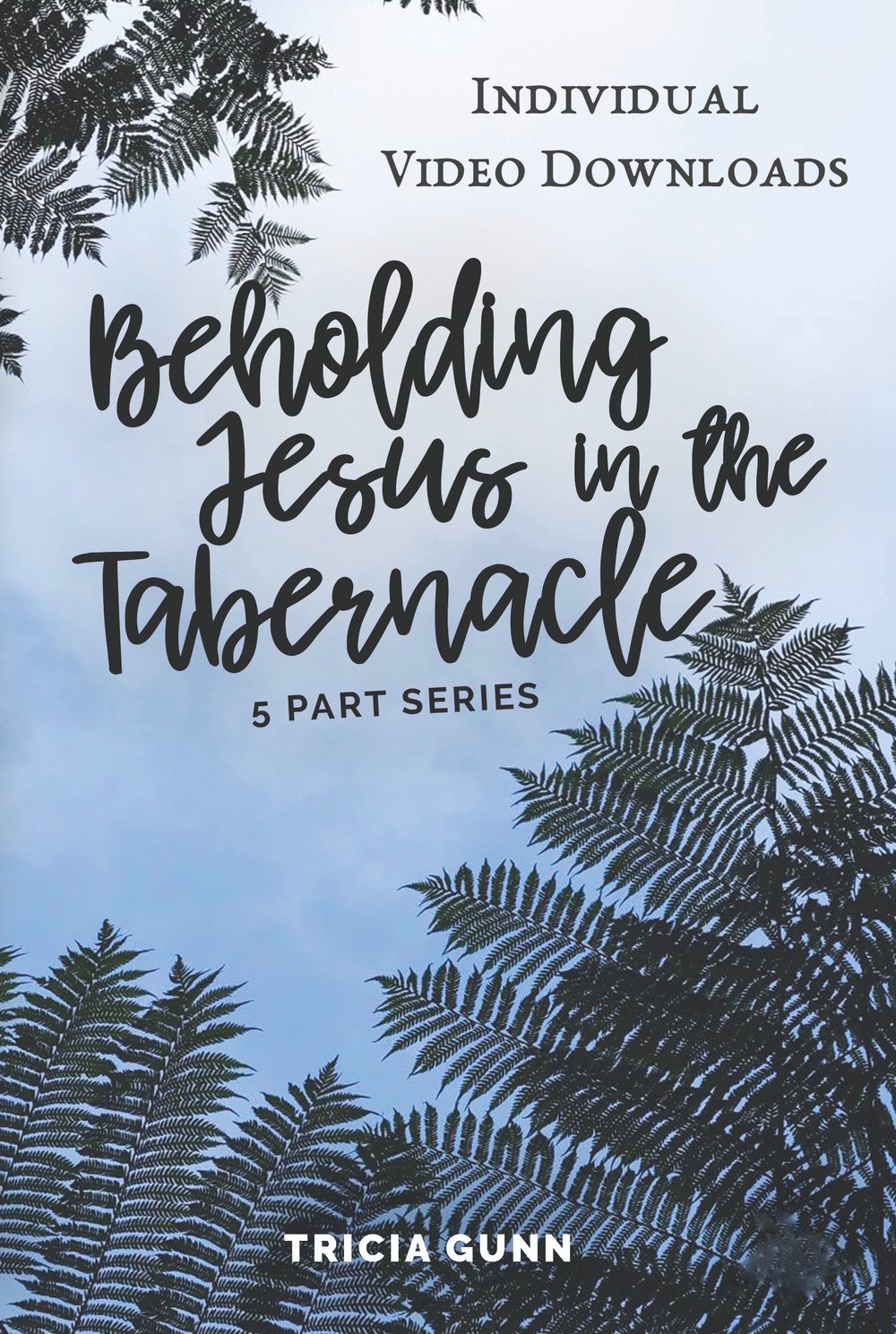 Beholding-Jesus-DVD-01, video individual.jpg