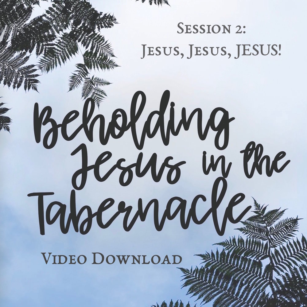 Beholding-Jesus-DVD-01, Session 2, square video.jpg