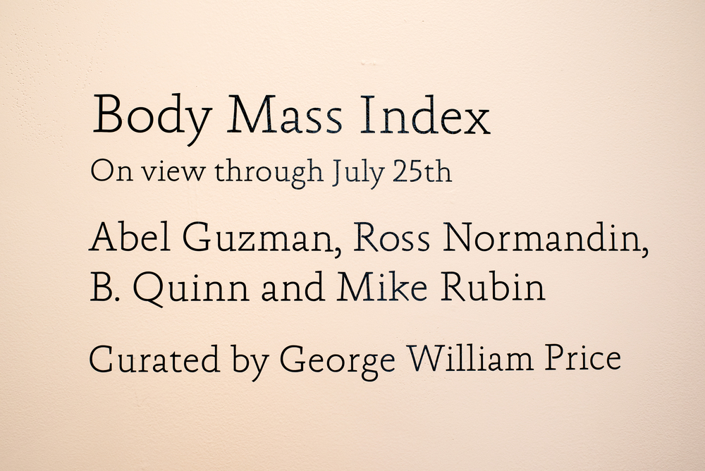 BodyMassIndex_11.jpg