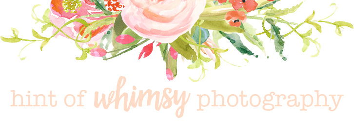 Hint of Whimsy Photography