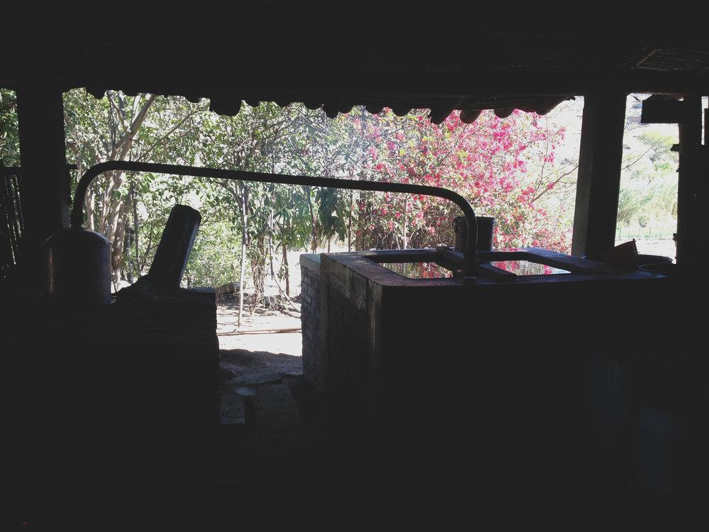 Rebecca+Mir+Grady+Palenque+in+Oaxaca.jpeg