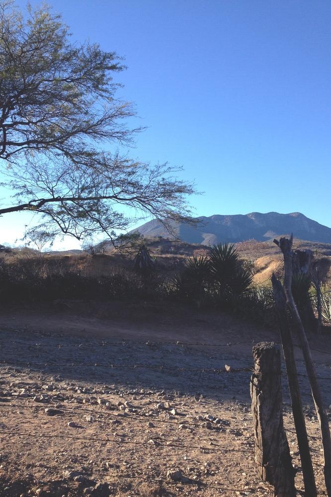 Rebecca+Mir+Grady+Oaxaca+Mountains.jpeg