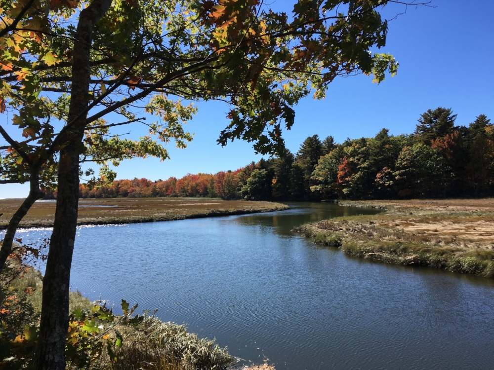 the Rachel Carson Preserve