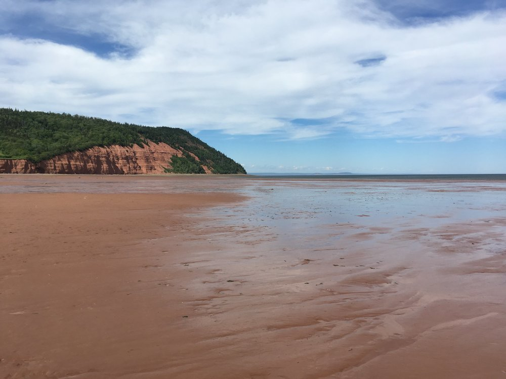 the cliffs at Blomidon