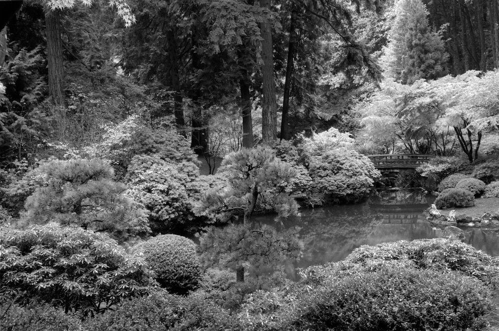 Portland Oregon Ilford Pan F 50  021