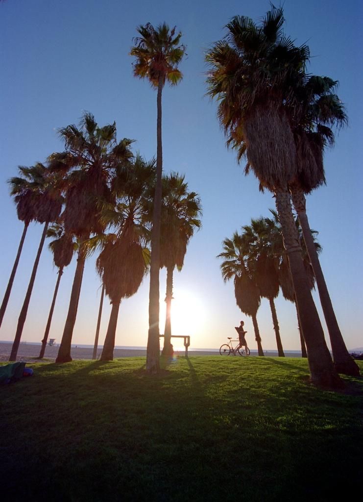 Santa Monica Pier Kodak Ektar  010
