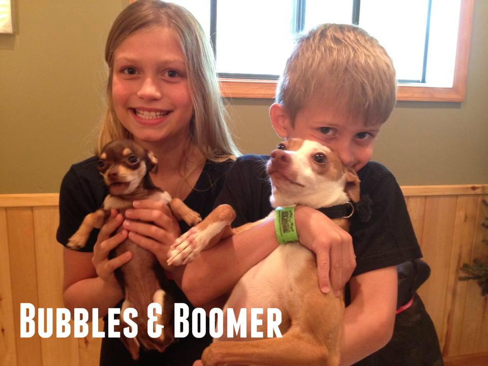 Boomer & Bubbles.jpg