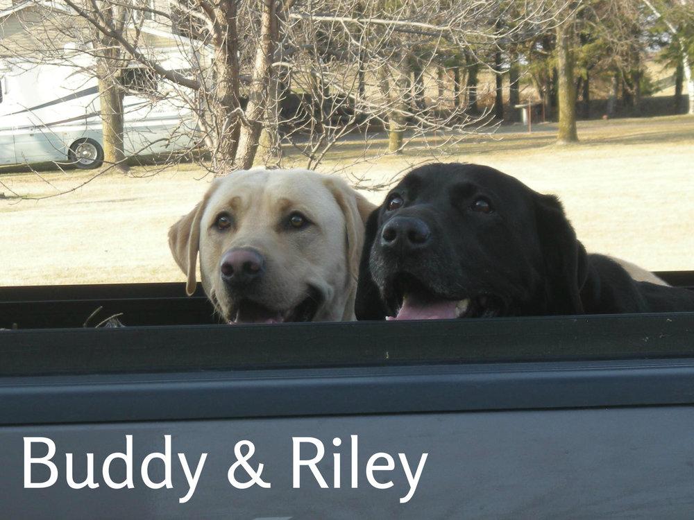 Riley & Buddy.jpg