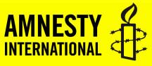 Amnestylogo.jpg