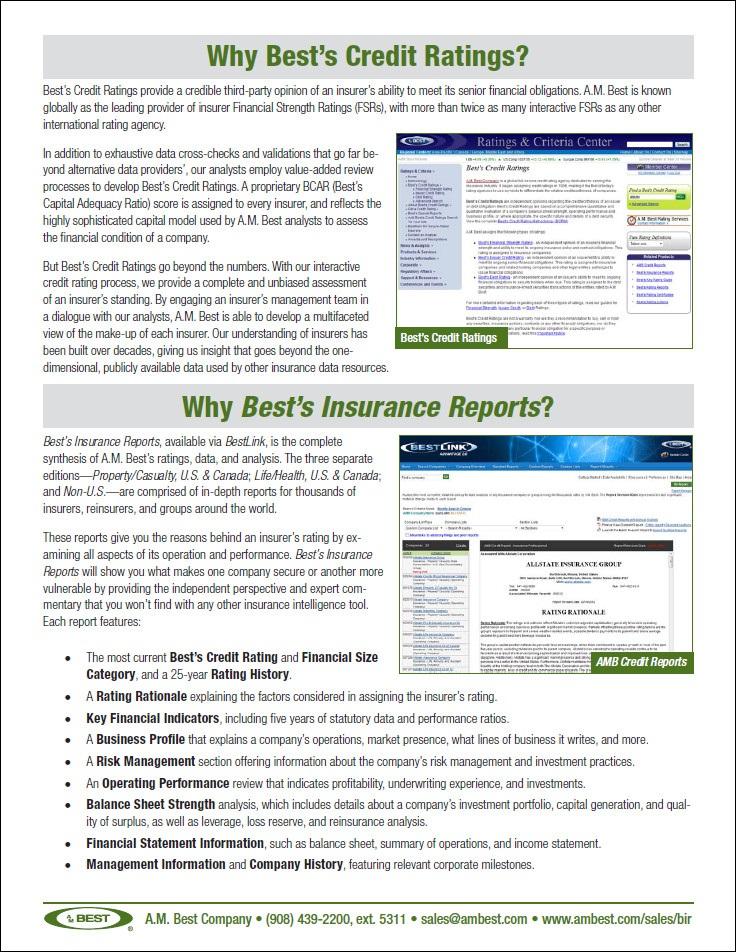 BIR BCR Brochure 3.jpg