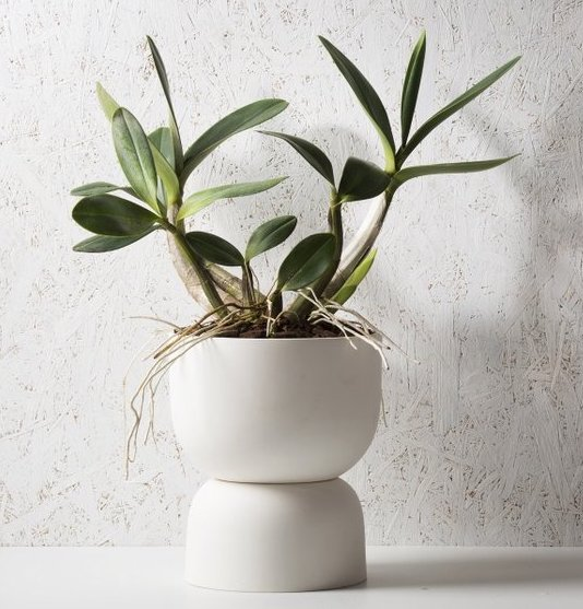 raw_earth_plant_stand_pots.jpg