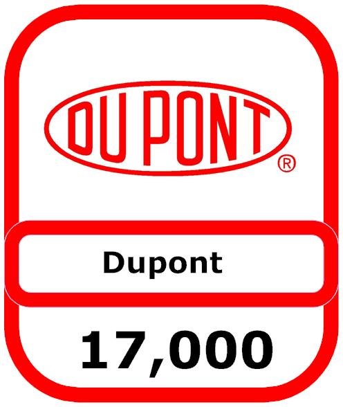 dupont-loss1.png