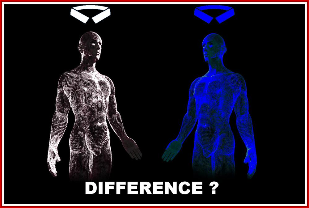 Am I Next? Blue collar vs. white collar robots.