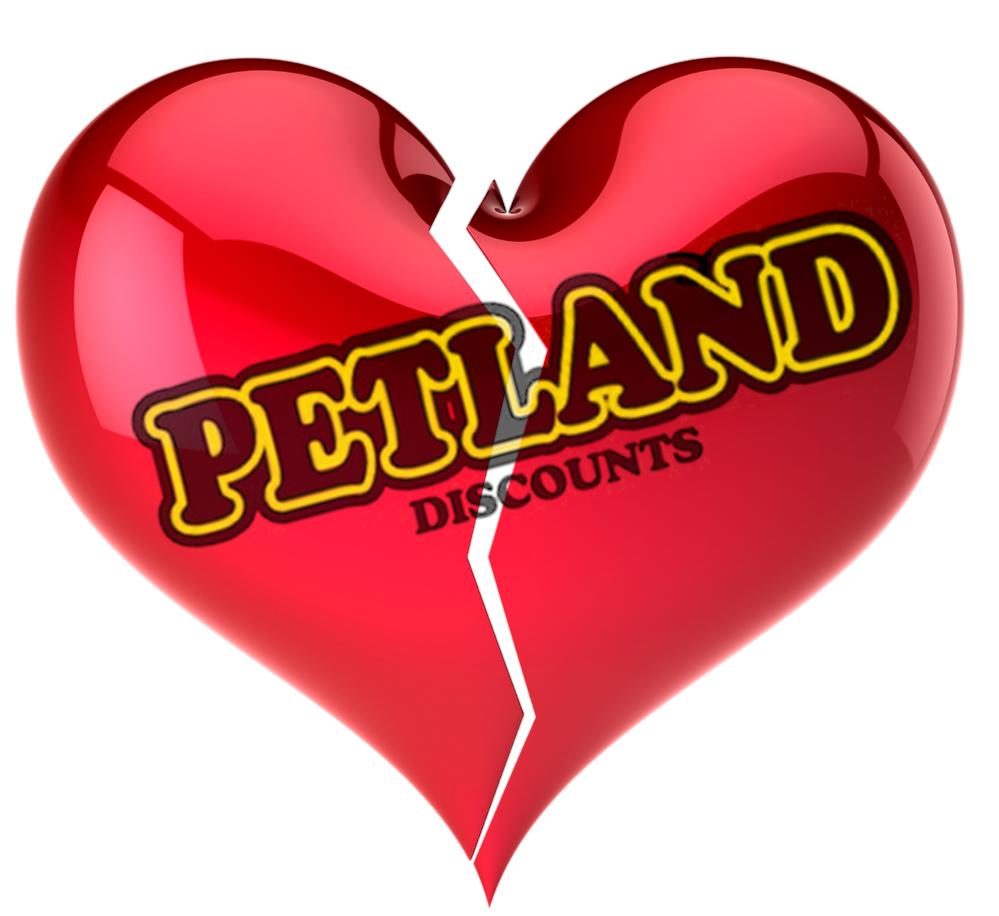 Am I Next? Layoffs and Store Closings at Petland Discounts.