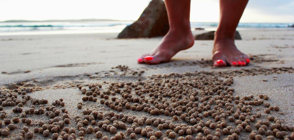 Crab Balls.jpg