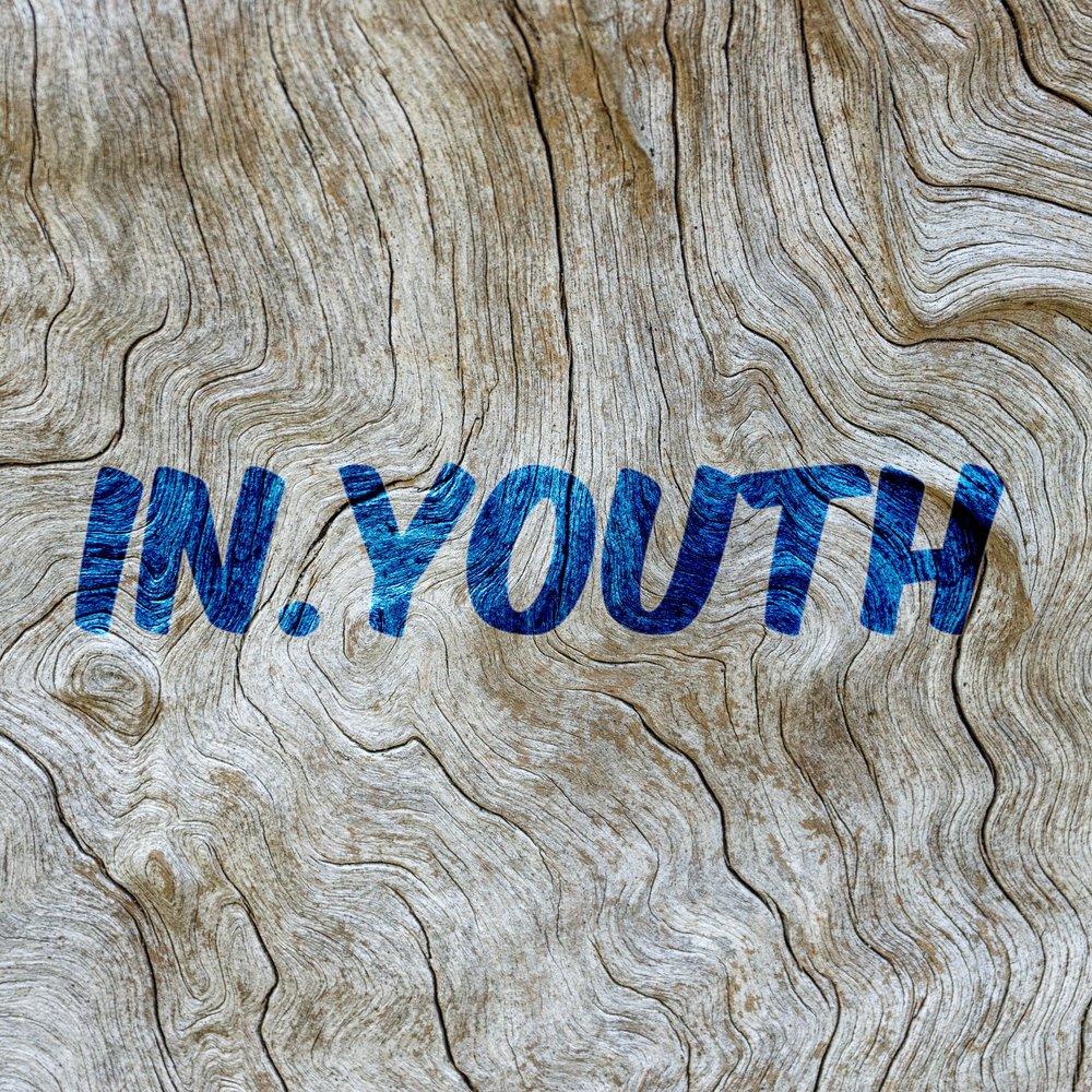 In.Youth.jpg