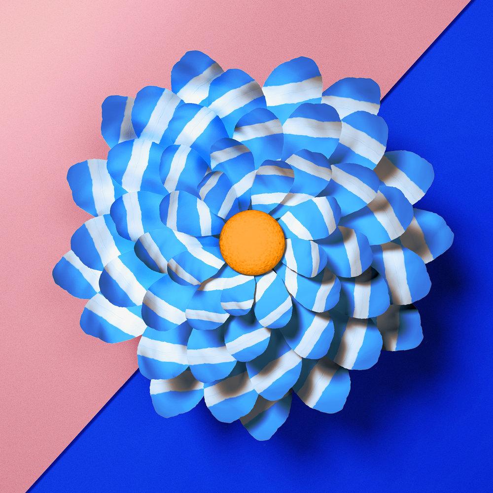 Karan Singh | Blossom