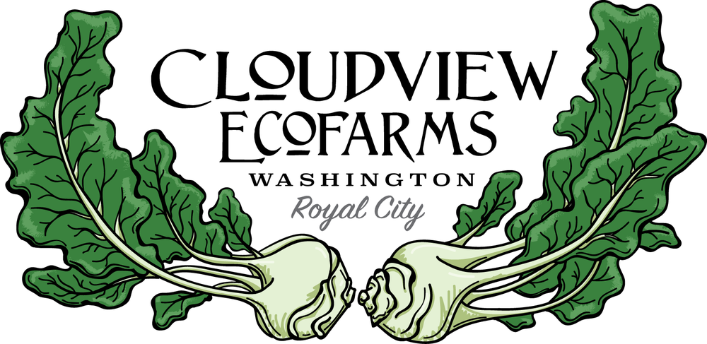 Cloudview Label
