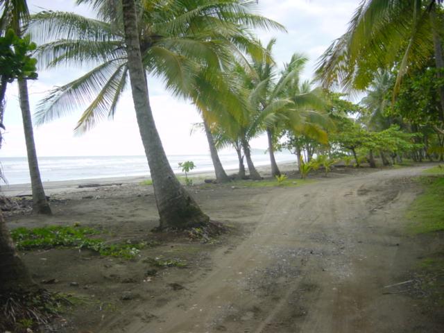 Esterillos beach parcel