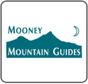 mooney.jpg
