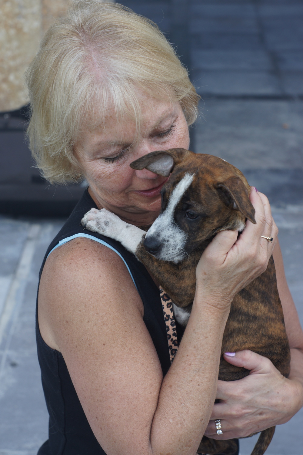 I think Josh's mom wants another grandpuppy, don't you?