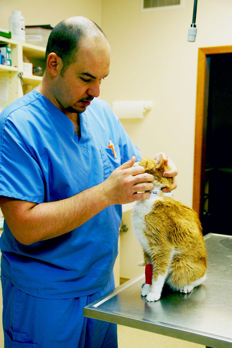 Dr Craig check's out Mr. Morris's eye.