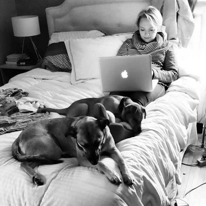 Who needs interns when you have dogs?