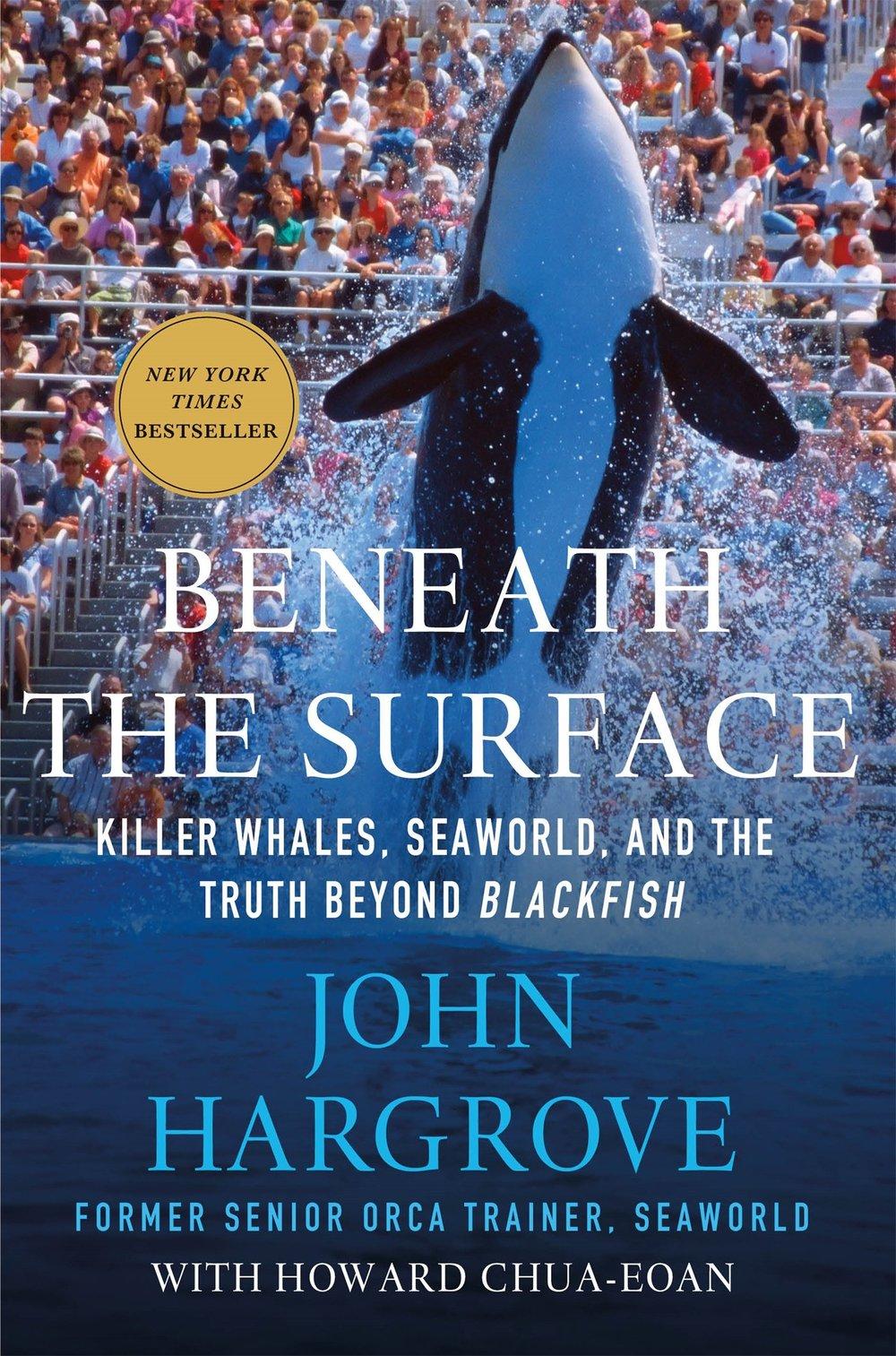 Beyond the Surface | John Hargrove