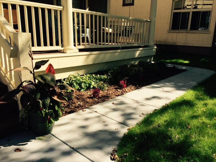 Our new sidewalk!