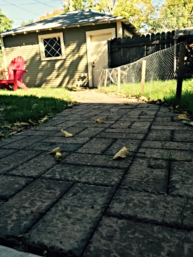 The paver walkway. Chicken wire = not permanent. Just keeping the dogs off the new grass.