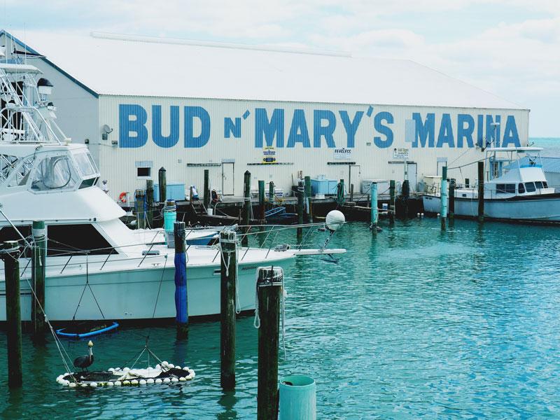 Bud N' Mary's - Islamorada, FL