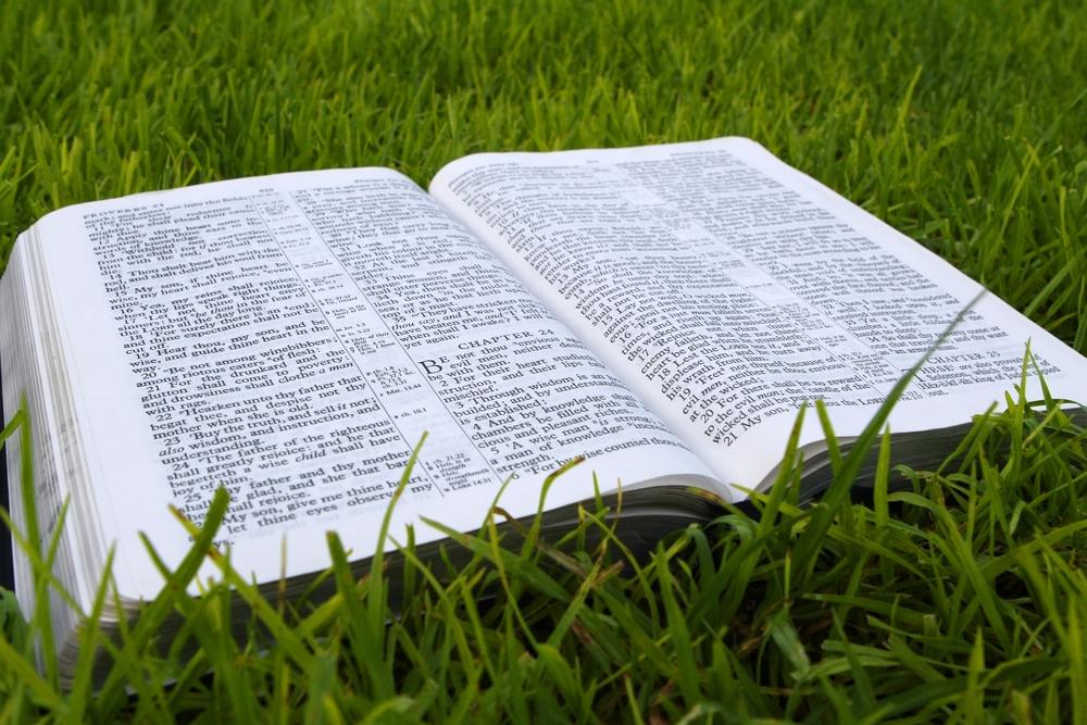biblegrass.jpg