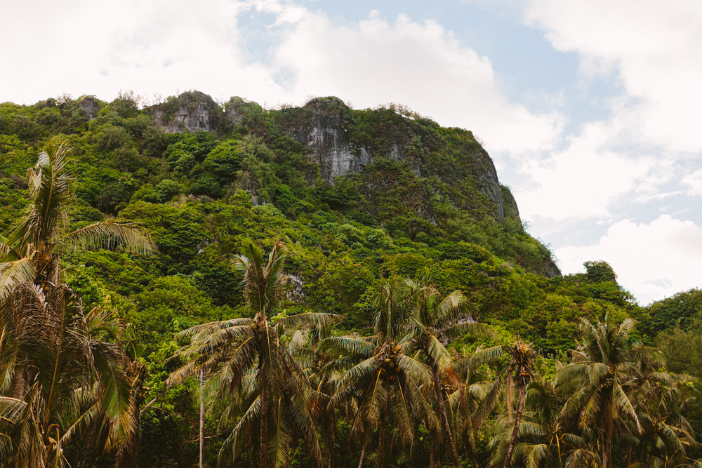 island-bambinos-2.jpg