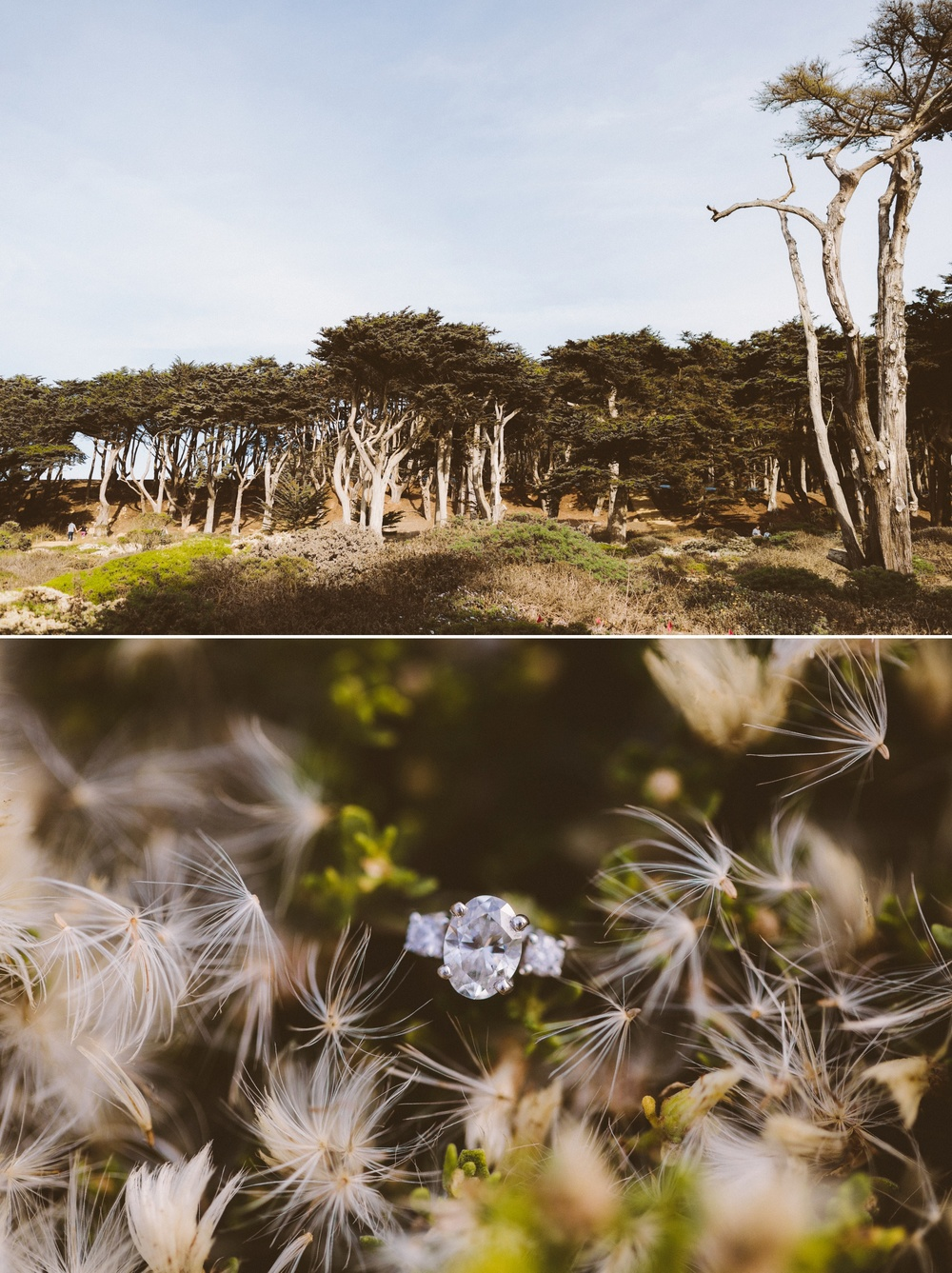 lands end sutro baths san francisco engagement wedding photographer victoria heer