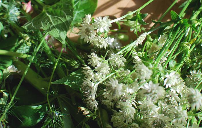 white-peony-bouquet-4.jpg